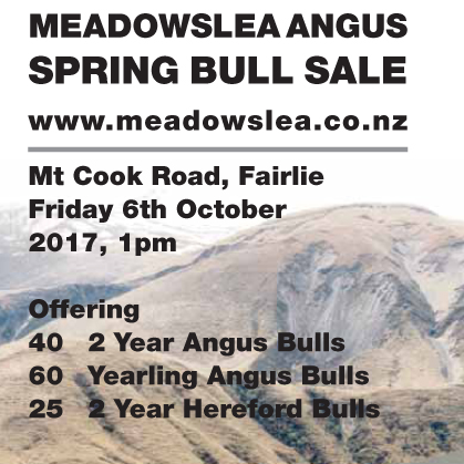 Meadowslea Angus - 6 October 2017