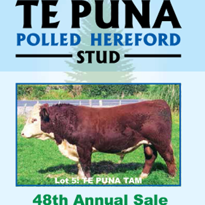 Te Puna Herefords - 3 July 2017
