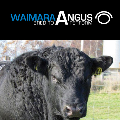 Waimara Angus - 26 May 2017