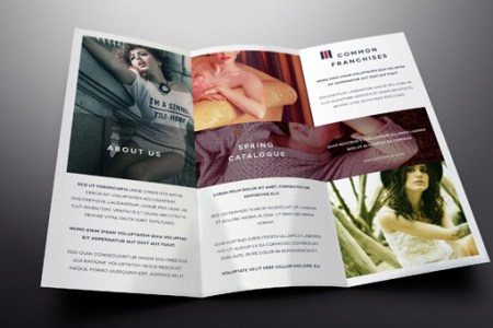 Simple Tri Fold Brochure Template   Brochure Templates   Pixeden Simple Tri Fold Brochure Template  Title Title
