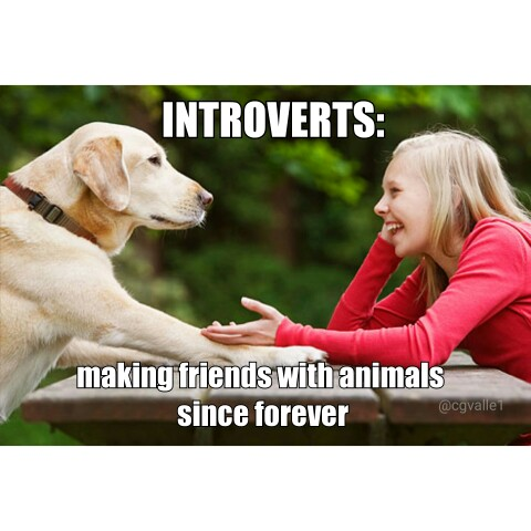 Of Introverts and Alien Pose