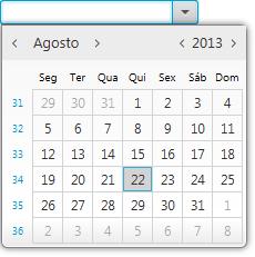 datePicker screenshot