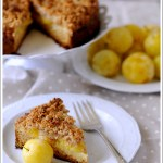 Streuselkuchen (Crumble Cake) alle Susine Gialle