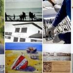 """Il """"Pesce Dimenticato"""": la Conservazione delle Sardine nella Friggera di San Vincenzo"""