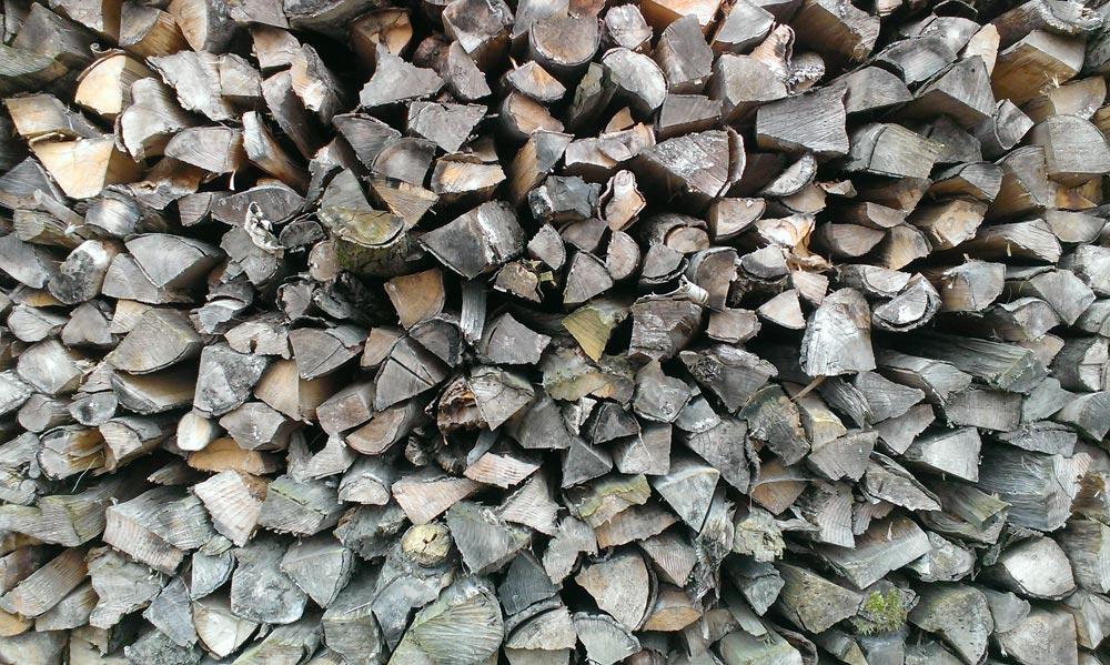 Ahornholz ist sowohl als Brennholz als auch als Werkstoff interessant