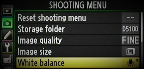 Different White Balance Settings