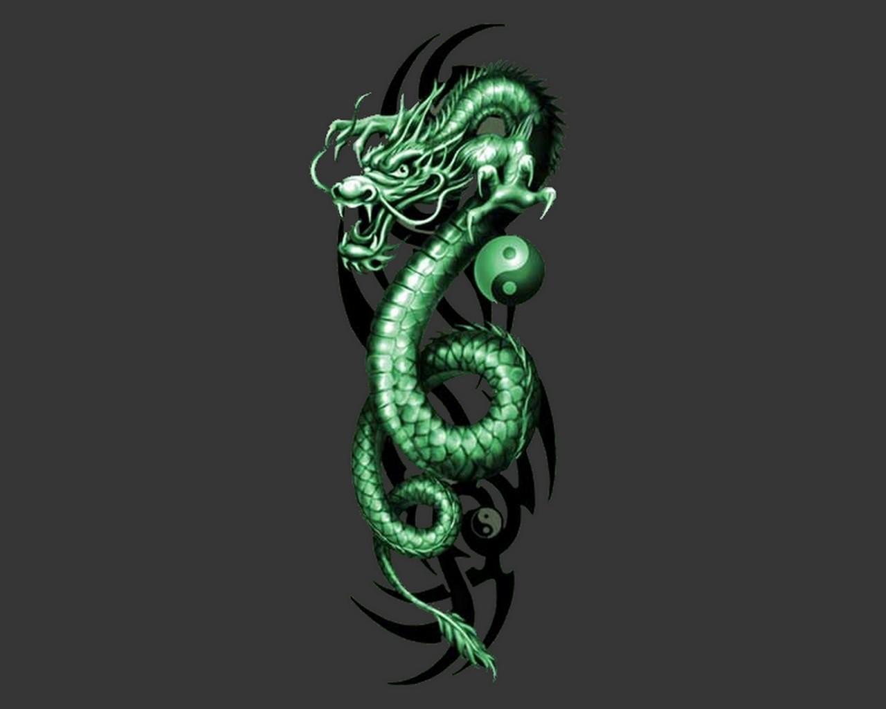 free download dragon backgrounds | pixelstalk