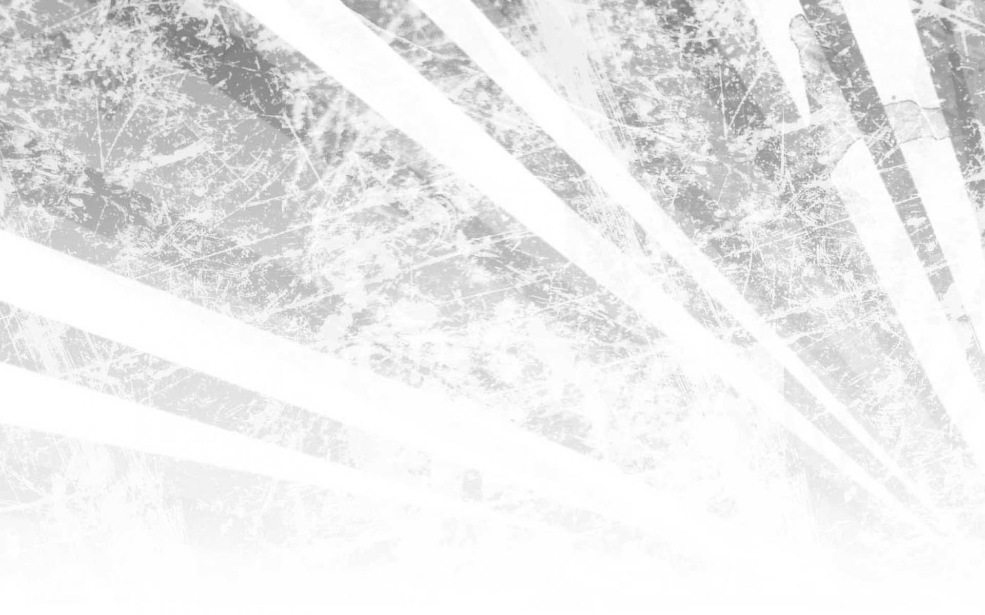 Winter Pine Backgrounds Abstract