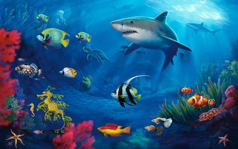 Underwater Wallpapers Hd Pixelstalk Net