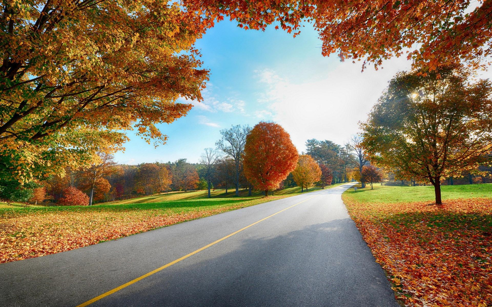 Free HD Fall Wallpapers