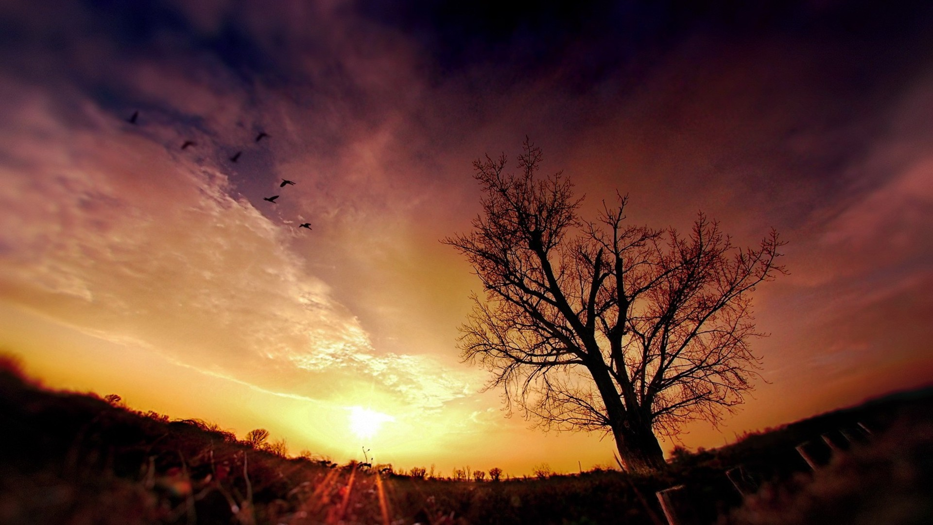 Tons of awesome background images nature dark to download for free. Cool Photography Backgrounds   PixelsTalk.Net