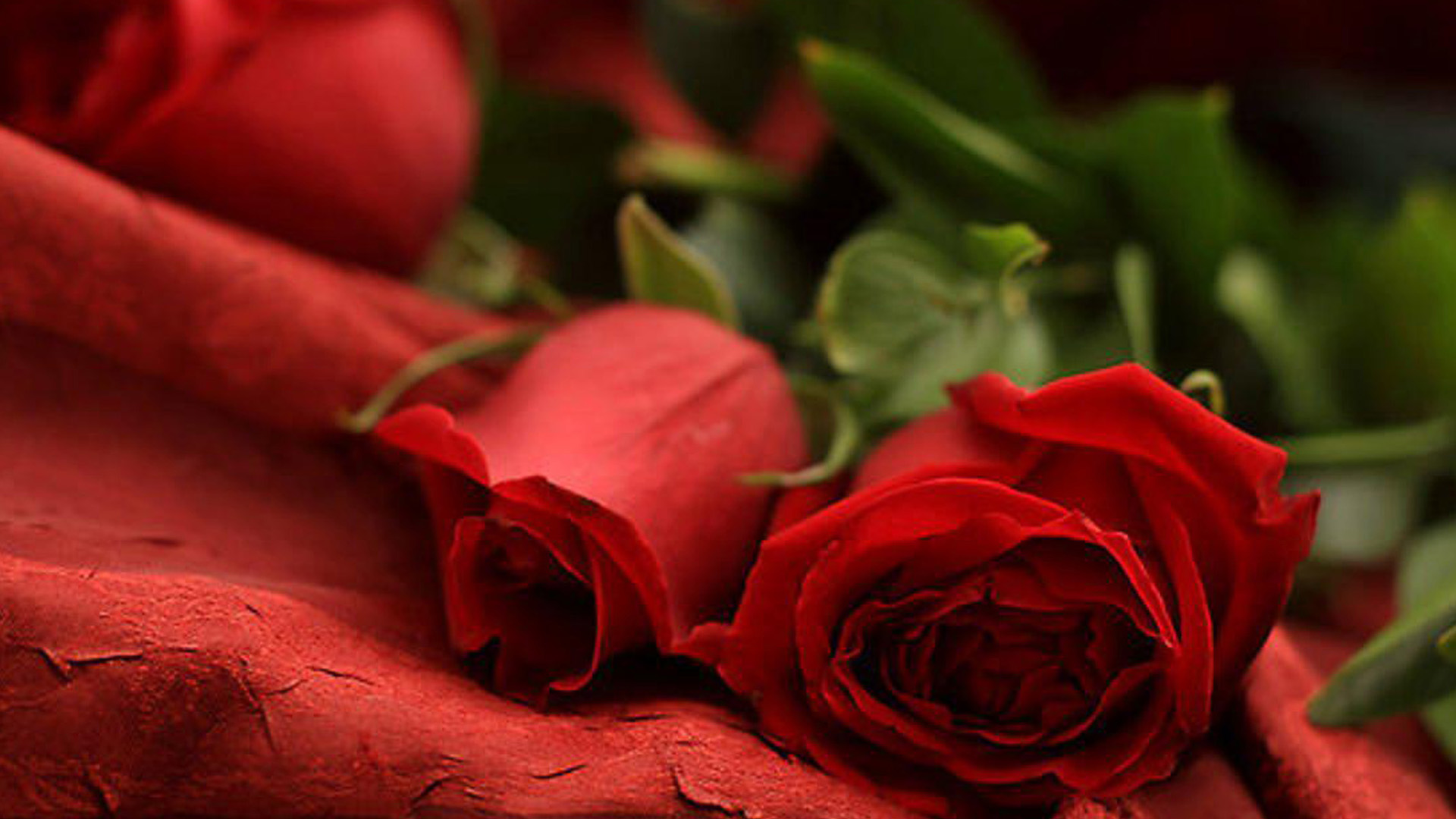 Free Download Romantic Wallpapers
