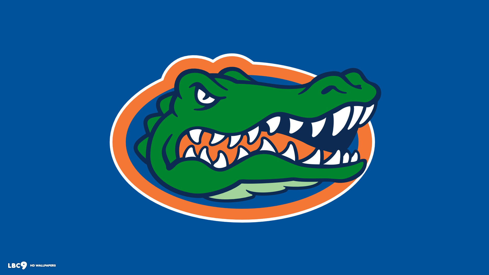 Image result for florida gators logo colored background