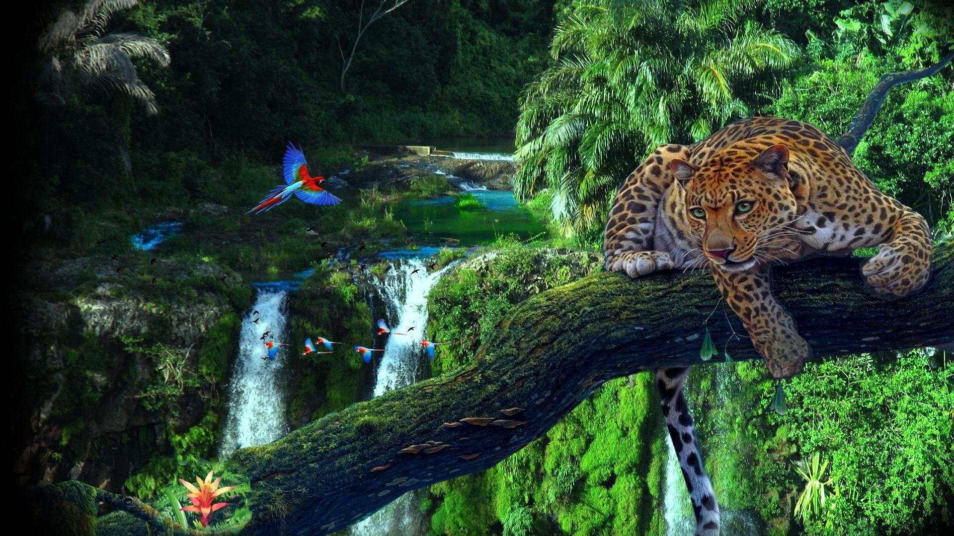 HD Jungle Desktop Backgrounds