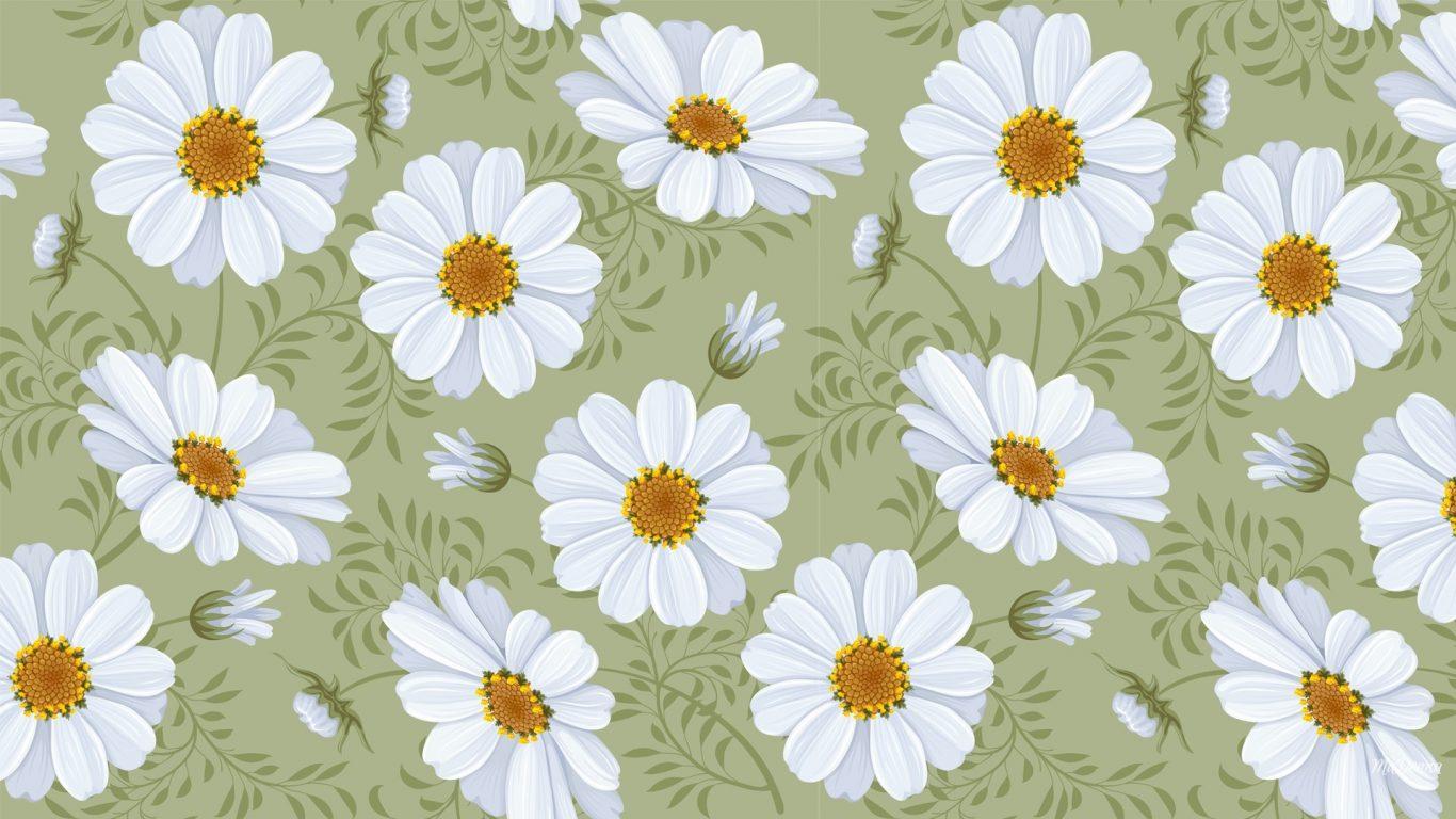 Blue White Daisy Flower