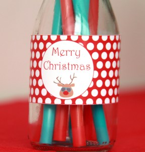 Christmas in July Party Ideas by Pixiebear