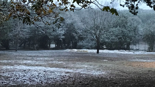 Image Of Snow In Field