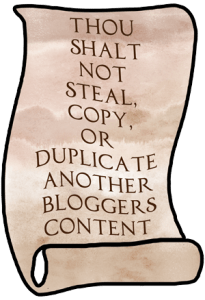 No Stealing, Copying, Or Duplicating Another Blogger's Content.
