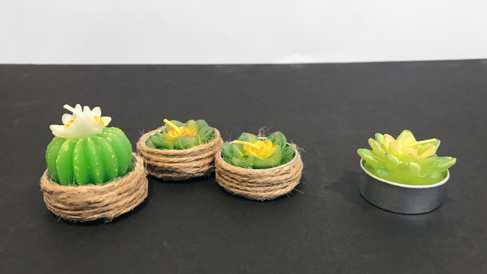 Miniature Tealight Succulents.