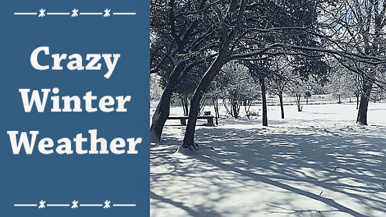 Crazy Winter Weather