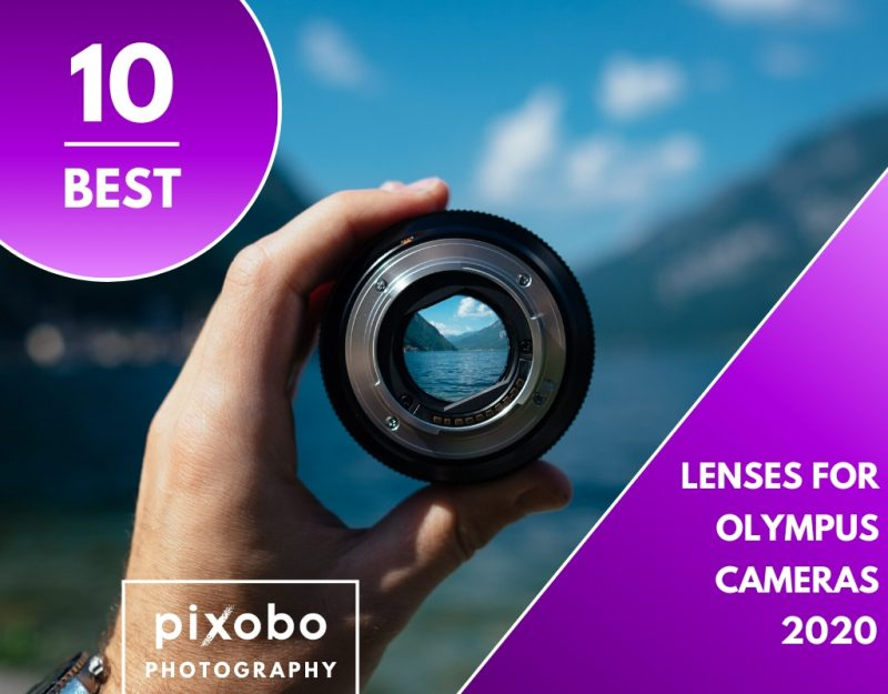Best Lenses for Olympus Cameras