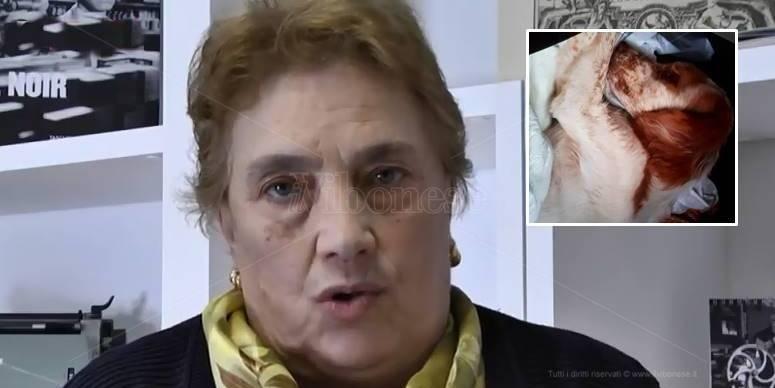 """Anna Barba, la """"mafia del pane"""" e un incubo che ritorna (VIDEO)"""