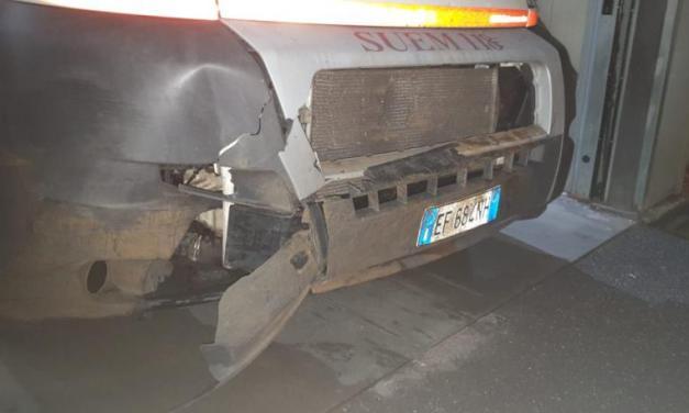 Ambulanza investe cinghiale durante un soccorso Attimi di paura nel Vibonese, ingenti i danni