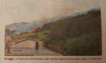 In fiamme il costone tra Pizzo e Vibo Marina