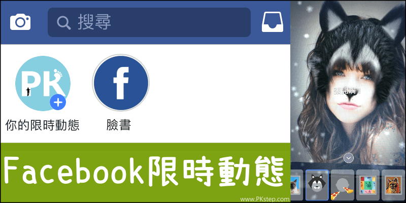 Facebook_my-story