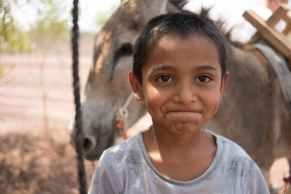 content ethnic boy standing near donkey