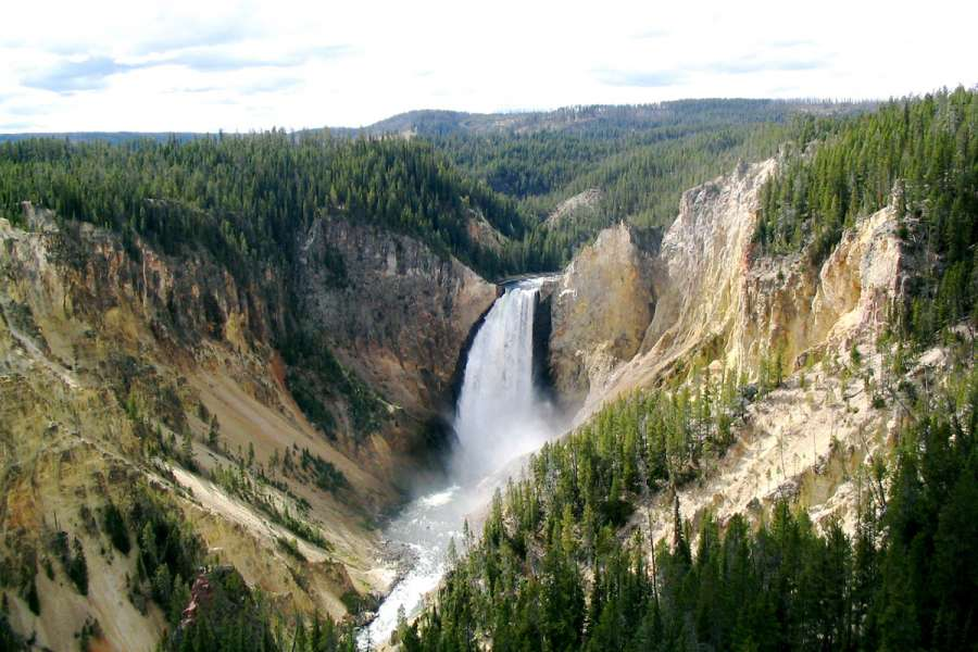 Parc National Yellowstone National Park