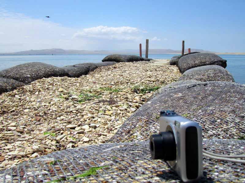 personal photographer