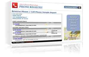 reverse phone sample report