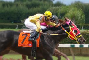 horserace-image