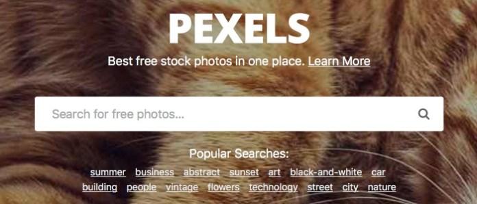 Pexels Image