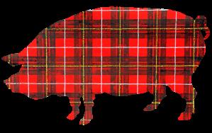 Plaid Pig PR Logo – No BG