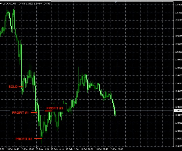 BEST FOREX SIGNALS USDCAD FEB13