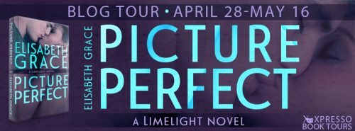 Picture Perfect tour banner