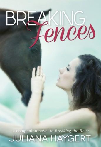 Breaking Fences book cover