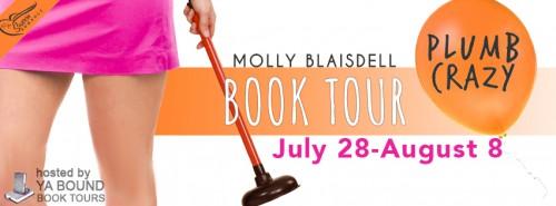 Plumb Crazy tour banner
