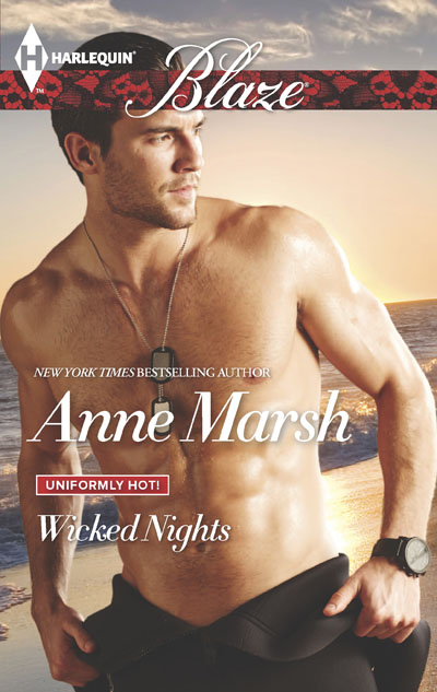 Wicked Nights Book cover