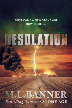 Desolation book cover