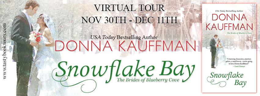 Snowflake Bay tour banner