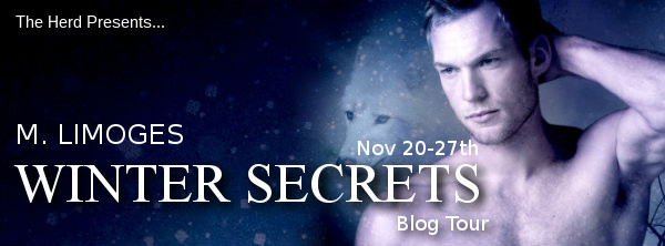 Blog tour Winter Solstice