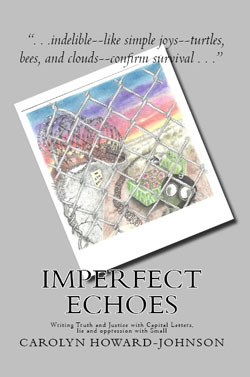Imperfect Echoes