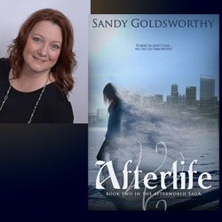 Sandy Goldsworthy book tour