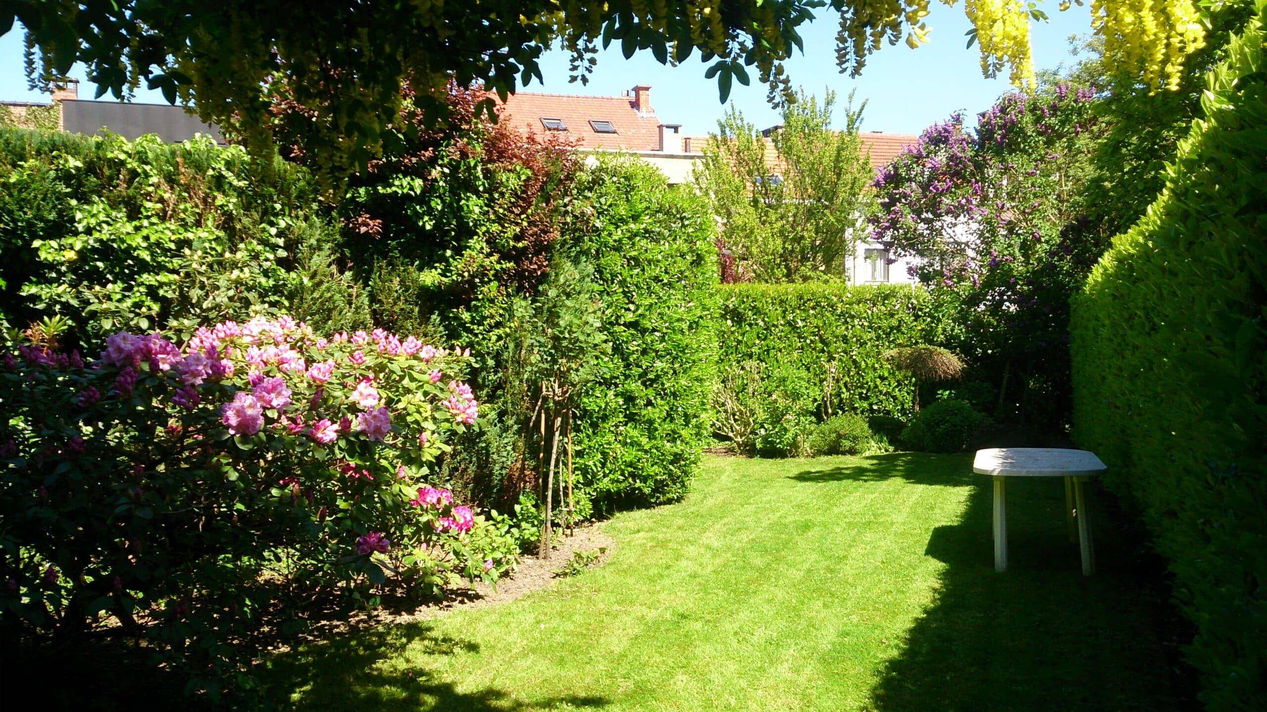 pelouse archives page 4 sur 4 plaisir vert jardinier paysagiste et arboriste cordiste. Black Bedroom Furniture Sets. Home Design Ideas