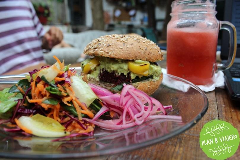 plan b viajero, recetas veganas, hábitos para un estilo de vida sustentable,