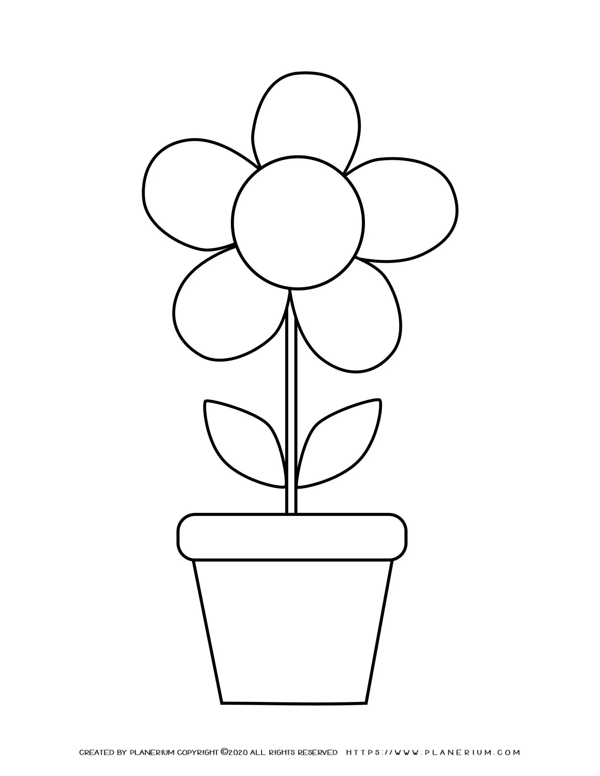 Spring Coloring Page Flower In A Pot Planerium