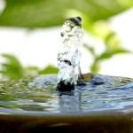 Fuentes de agua: relajación natural